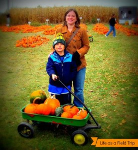 Pumpkins at Delzer's Pumpkin Patch!