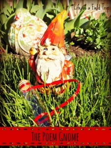 The Poem Gnome: Summer Reading Fun