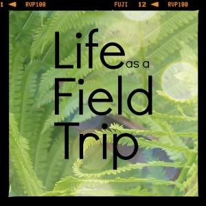 Life as a Field Trip