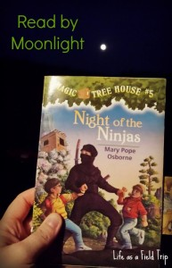 Reading by Moonlight