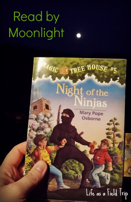 The perfect nighttime read!