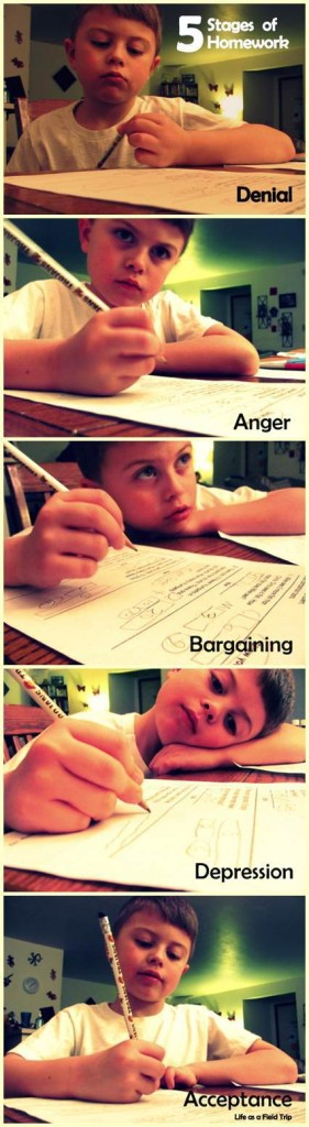 stages of homework