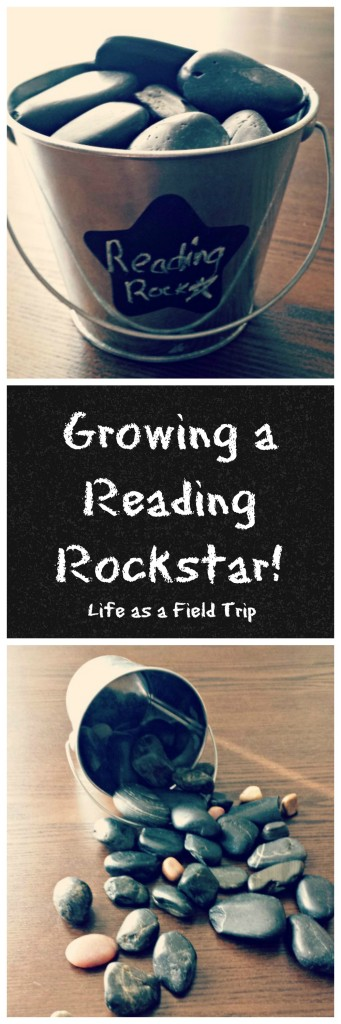 Growing a Reading Rockstar