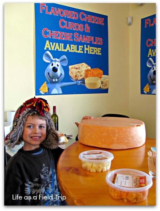 6 Great Winter Outings in Northeast Wisconsin Renard's Cheese {Life as a Field Trip}