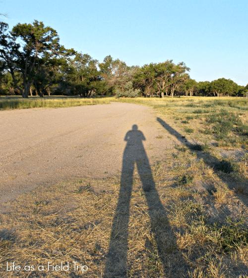 Colorado's Hidden Gem: Pawnee National Grassland