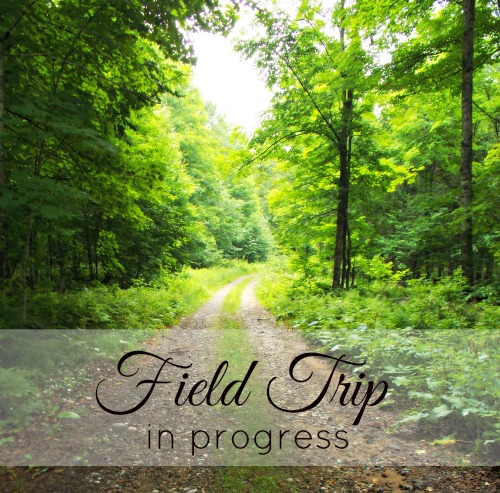 Field Trip in Progress {Life as a Field Trip}