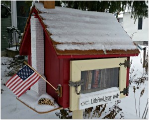 Embrace Winter: Free Little Libraries