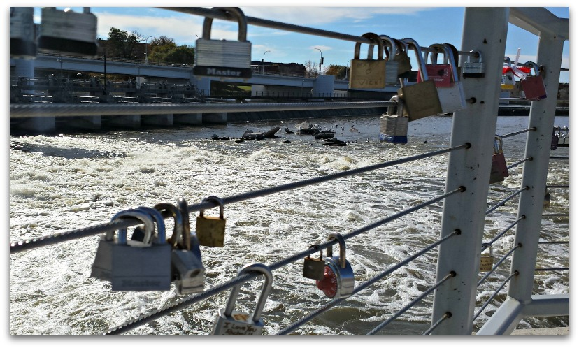 Another Dam Valentine's Day- Declare your love with a padlock!