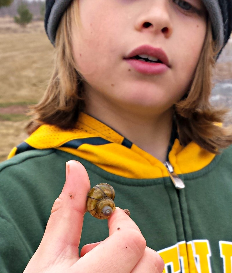 Spring Sundays: Animal Tracks, Bird Calls, and Skipping Rocks