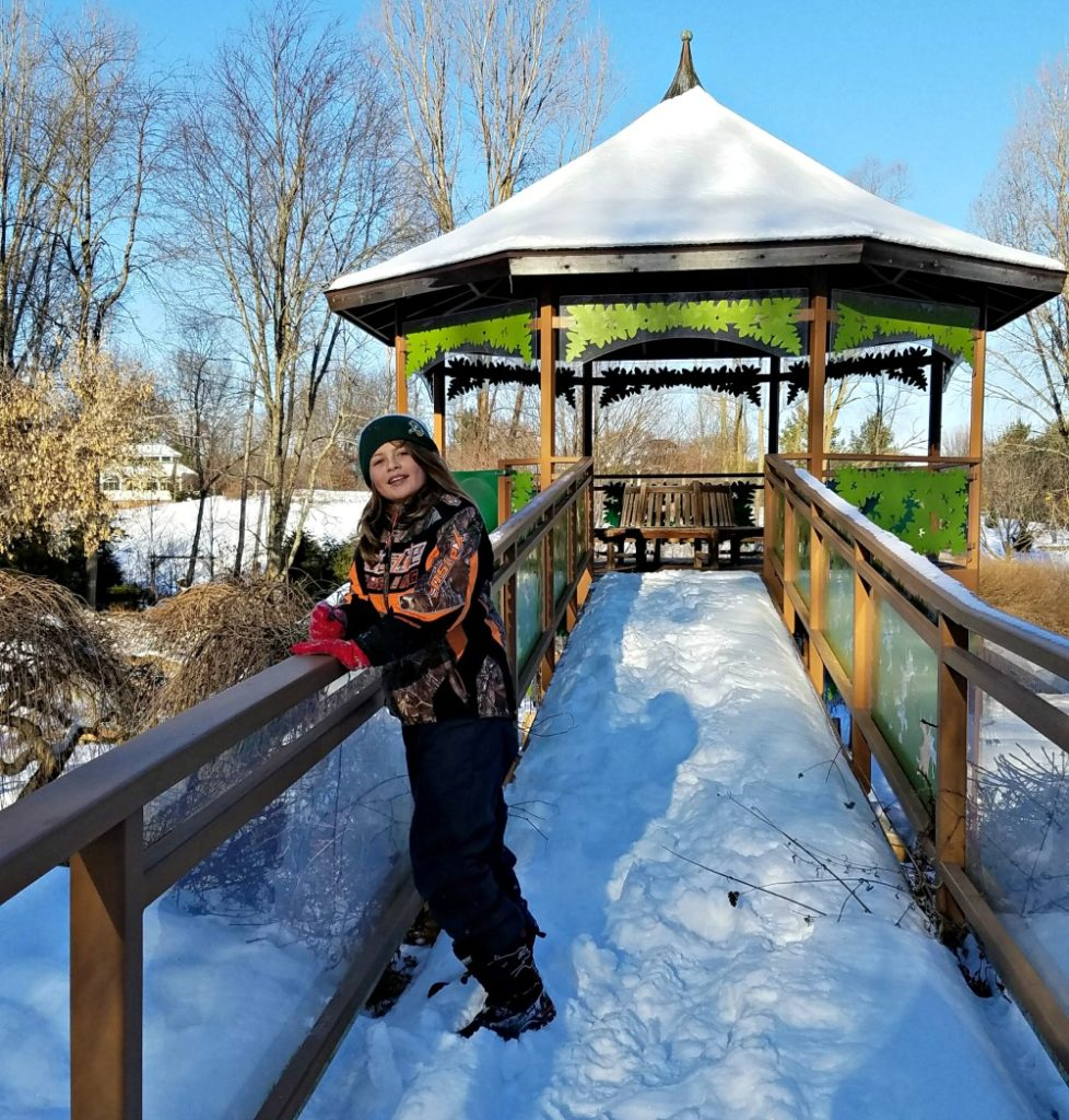 Winter at the Green Bay Botanical Garden